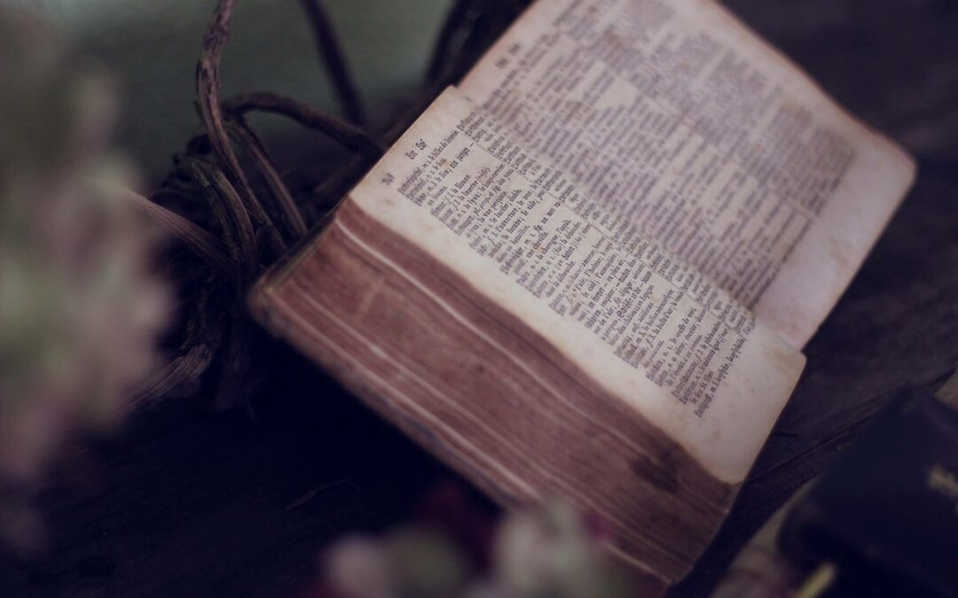 Se la destra specula sul natale a dispetto dei Santi